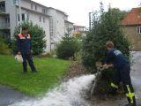 Foto zur Aktion vom 05.09.2008 19:00