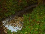 Foto zum Einsatz vom 03.11.2008 14:12
